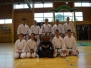 Zaključek karateja 17.06.2014