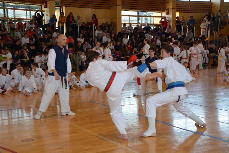 Karate klub Ivančna Gorica